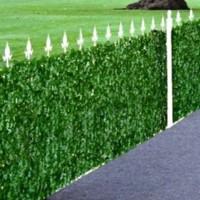 Декоративное зеленое покрытие Темный вьюнок GC-04